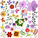 Big collection flowers and  butterflies Royalty Free Stock Photography