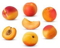 Big collection fresh ripe apricot, whole, slice, cut in half wit royalty free stock photos