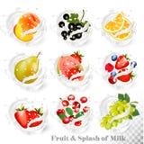 Big collection of fruit in a milk splash. Peach, orange, pear, stock illustration