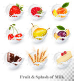 Big collection of fruit in a milk splash. Royalty Free Stock Photos