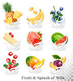Big collection of fruit in a milk splash. Stock Photography