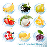 Big collection of fruit in a water splash icons. Banana, coconut, peach, orange, plums vector illustration