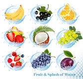 Big collection of fruit in a water splash icons. Banana, coconut, peach, orange, plums stock illustration