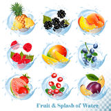 Big collection of fruit in a water splash icons. Pineapple, mango,peach, guava, blueberry stock illustration