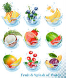 Big collection of fruit in a water splash. Pineapple, mango stock illustration