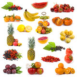 Big collection of fruits Stock Photo