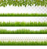 Big collection of green grass and french. Royalty Free Stock Image