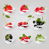 Big collection icons of fruit and berries in a milk splash. Raspberry, blackberry, strawberry, cherry, blackcurrant, blueberry. Vector Set 2 Royalty Free Stock Photos