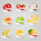Big collection icons of fruit in a milk splash. Apple, mango, banana, peach, pear, orange, coconut Royalty Free Stock Photo