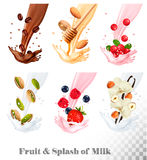 Big collection icons of fruit in a milk splash. Coffee, nuts, cranberry, raspberry, strawberry, almond, blueberry, honey, vanilla. Vector Set Stock Photos