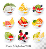 Big collection icons of fruit in a milk splash. Guava, coconut, mango Royalty Free Stock Images