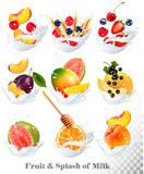 Big collection icons of fruit in a milk splash. Royalty Free Stock Photos