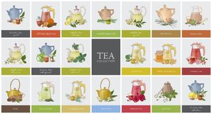 Big collection of labels or tags with various types of tea - black, green, rooibos, masala, mate, puer. Set of hand stock illustration