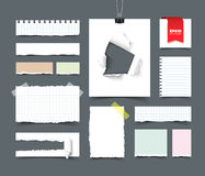 Big collection of office paper. Set of various paper sheets and pieces. Sqared and lined notepaper, paper with hole and paper roll, torn paper with ripped edges Royalty Free Stock Images