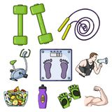Big collection of sport and fitness vector symbol stock illustration Stock Image