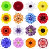 Big Collection of Various Concentric Flowers Isolated on White. Big Collection of Various Concentric Pattern Flowers. Kaleidoscopic Mandala Patterns Isolated on Stock Photo