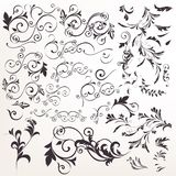 Big collection of vector calligraphic flourishes for design stock illustration