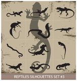 Big collection of vector reptiles silhouettes Royalty Free Stock Photography