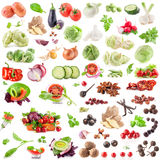 Big Collection of vegetables and spices Stock Photography