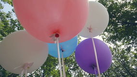 Big colorful balloons in the forest stock footage