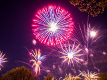 Big colorful fireworks Stock Image