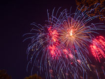 Big colorful fireworks Royalty Free Stock Images