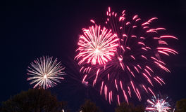 Big colorful fireworks Royalty Free Stock Photography