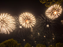 Big colorful fireworks Stock Photography