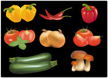 The big colorful group of ripe vegetables. Royalty Free Stock Image