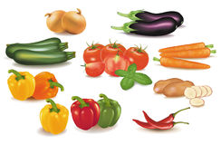 The big colorful group of vegetables. Royalty Free Stock Photos