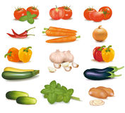 The big colorful group of vegetables. Stock Images