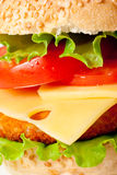 Big colorful hamburger macro Royalty Free Stock Photos