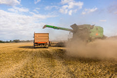 Big combine cutting the ripe seed at a yellow field Royalty Free Stock Image