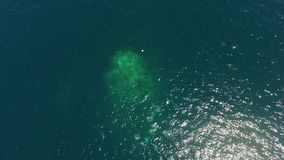 A big coral reef seen from above. An aerial shot of a big coral reef under water stock footage