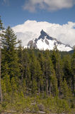 Big Cowhorn Mt. Thielsen Extinct Volcano Oregon Cascade Range Mo Royalty Free Stock Image