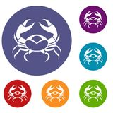 Big crab icons set. In flat circle red, blue and green color for web Stock Images