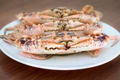 Big crabs on white plate Royalty Free Stock Image