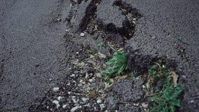 Big crack on the asphalt. A big crack on the asphalt stock video