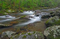 Big Creek Royalty Free Stock Image