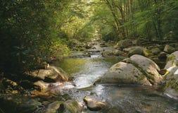 Big Creek Royalty Free Stock Photography