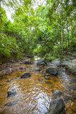 A big creek with a lot of stones and rocks and clear water. Flows through a jungle in the middle highland of Sri Lanka in the Indian Ocean Stock Photos