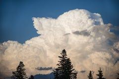 Big cumulus storm cloud. Huge towering cumulus storm cloud in the sky Royalty Free Stock Image