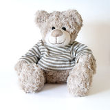 Big cute bear. In striped sweater on the white background Stock Images