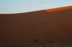 Big Daddy Dune de escalada durante o nascer do sol, paisagem do deserto, Namíbia foto de stock royalty free