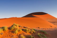 Big Daddy sand dune in the early morning light. Sossusvlei, Namibia, Africa royalty free stock image