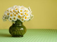 Big daisy bouquet in a vase. Rich daisy bouquet in a glass vase on the table in front of a yellow wall - pastel colors - lots of copy space royalty free stock image