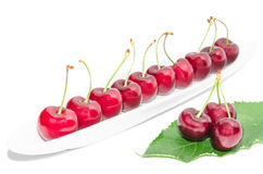 Big dark red ripe cherry berry row arranged on long white dish. And fresh green leaf isolated Royalty Free Stock Photography