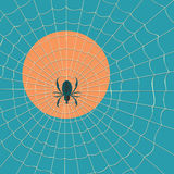 Big dark spider on the web Royalty Free Stock Images