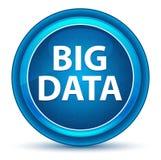 Big Data gałki ocznej Round Błękitny guzik royalty ilustracja