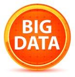 Big Data Round Naturalny Pomarańczowy guzik ilustracja wektor